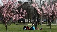 Sonniger Frühling in Belgrad: Die wirtschaftliche Entwicklung Serbiens stimmt Investoren zuversichtlich.