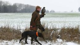 Manche Jäger haben einen Vogel