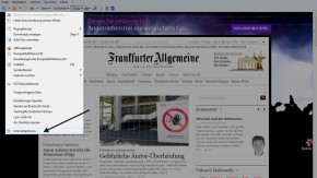 FAZ.NET als Startseite für Internet Explorer I