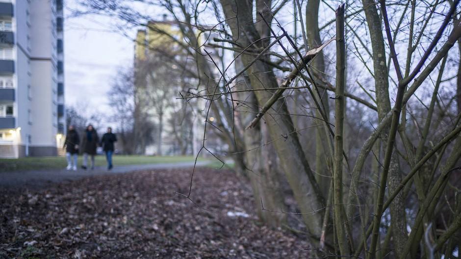In diesem Gebüsch in der Nähe eines kleinen Flusses in Rüsselsheim haben Spaziergänger einen in ein Handtuch gewickelten Säugling gefunden, nachdem sie Schreie gehört hatten.