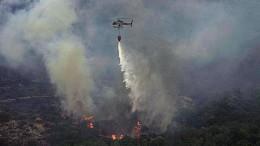 Heftige Waldbrände auf Sardinien wüten weiter