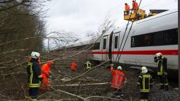 Bahn will Sturmschäden vorbeugen
