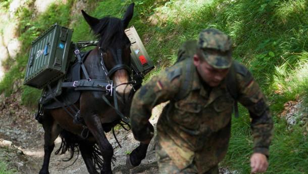 Gebirgstragtierwesen - Mit Mulis und Haflingern transportiert das Einsatz- und Ausbildungszentrum für Gebirgstragtierwesen (EAZ) als die einzige pferdehaltende Dienststelle der Bundeswehr Waffen und Versorgungsgüter im schwer zugänglichem Gelände.