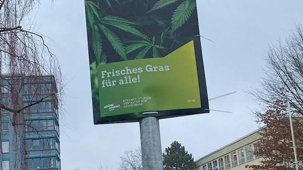 Wahlwerbung mit Cannabis-Pflanze