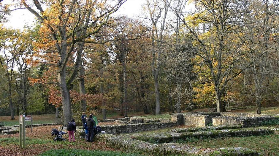 Anerkennung zu Unesco-Weltkulturerbe 2005: Seitdem ist das Kastell Kapersburg ein Landschaftspark