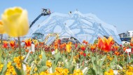 Den Heilbronnern blüht etwas: Noch wird gebaut, wo in wenigen Tagen die Bundesgartenschau eröffnen soll.