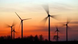 Kann Deutschland ohne Wohlstandsverlust klimaneutral werden?