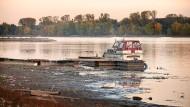 Trockengelegt: Der Rhein führt derzeit extrem wenig Wasser.