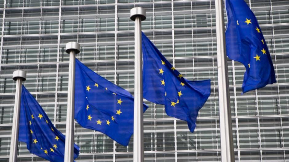 Der Petitionsausschuss des Europäischen Parlaments ist irritiert über Deutschlands Umgang mit einigen strittigen Sorgerechtsfällen