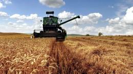 Hessens Bauern fürchten um ihre Ernte