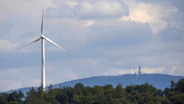 Die Grünen in Wald und Wind