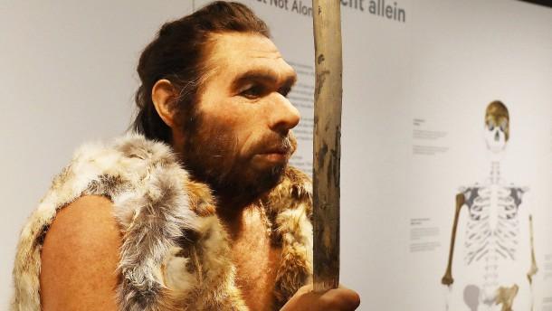 Wissenschaftler begeistert von Neandertaler-Fund in Italien