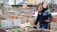 Nur die Harten kommen in'n Garten: Beim Frankfurter Garten zimmern sich die Stadtgärtner ihre Hochbeete selbst.