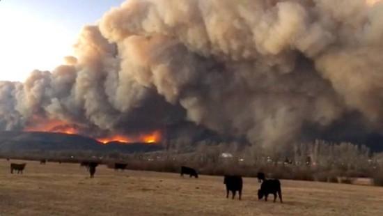 Schwere Waldbrände kosten Menschen das Leben