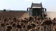 Ausländische Investoren beackern russische Felder