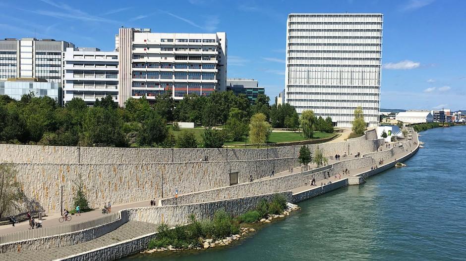 Es soll grüner werden: An der Rheinuferpromenade in Basel konnten wegen Leitungen kaum Bäume gepflanzt werden.