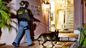 Mehr als 750 mutmaßliche Kartellmitglieder bei Großrazzia festgenommen