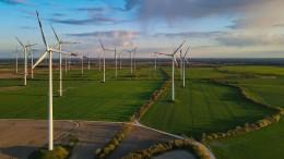 Baerbock: Deutschland braucht massiven Ausbau erneuerbarer Energien