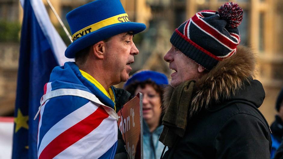 """Szene eines Streits zwischen Steve Bray, Aktivist der """"Remainer"""", und einem """"Leaver"""" vor dem britischen Parlament im Januar"""