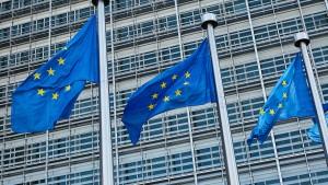 Aufbau von EU-Staatsanwaltschaft