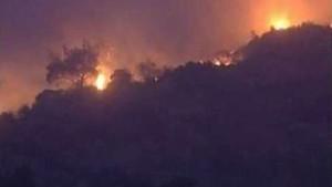Legionäre setzen Wald in Brand