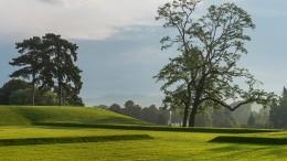 Parks und Grünanlagen auch in diesem Frühjahr beliebt