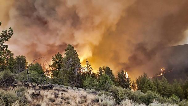 Klimaforscher warnen vor schweren Naturkatastrophen