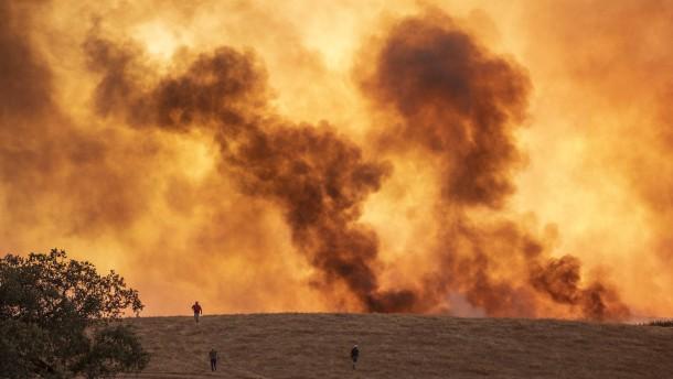Waldbrände wüten weiter im Mittelmeerraum
