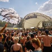 Runter vom Rasen? In Rüsselsheim regen sich Sorgen um die Mainwiesen, auf denen in den vergangenen zwei Jahren das Festival Love Family Park gefeiert wurde.