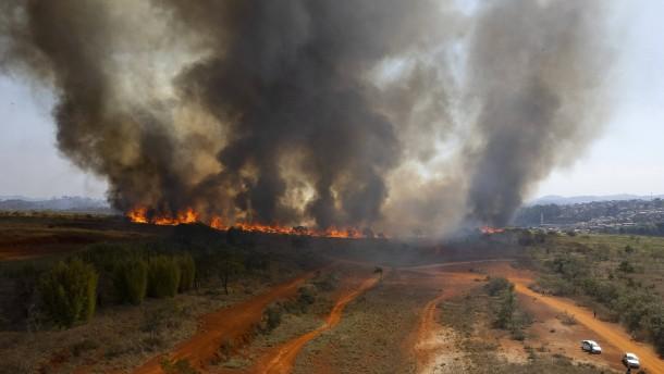 Waldbrände in vielen Regionen Brasiliens