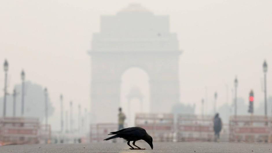 Lebensbedrohlich: In den indischen Wintermonaten sieht man in Delhi und anderswo regelmäßig kaum die Hand vor Augen.
