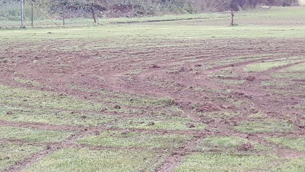 """""""Blanker Vandalismus"""": Fußballplatz mit Auto ramponiert"""