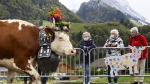 """Jodelkonzert führt zu """"einem der europaweit schlimmsten Ausbrüche"""""""