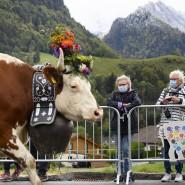 Vorbildlich: Anders als die Jodler in Schwyz tragen diese Zuschauerinnen eines Alpabzuges im Kanton Freiburg einen Mund-Nasen-Schutz.