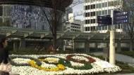 Tokio verspricht grüne Sommerspiele