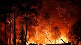 Buschfeuer in Australien wüten weiter