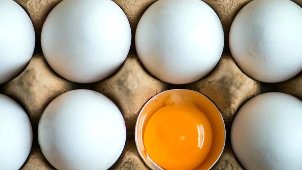 Fipronil-Eier sind auch nach Hessen gelangt