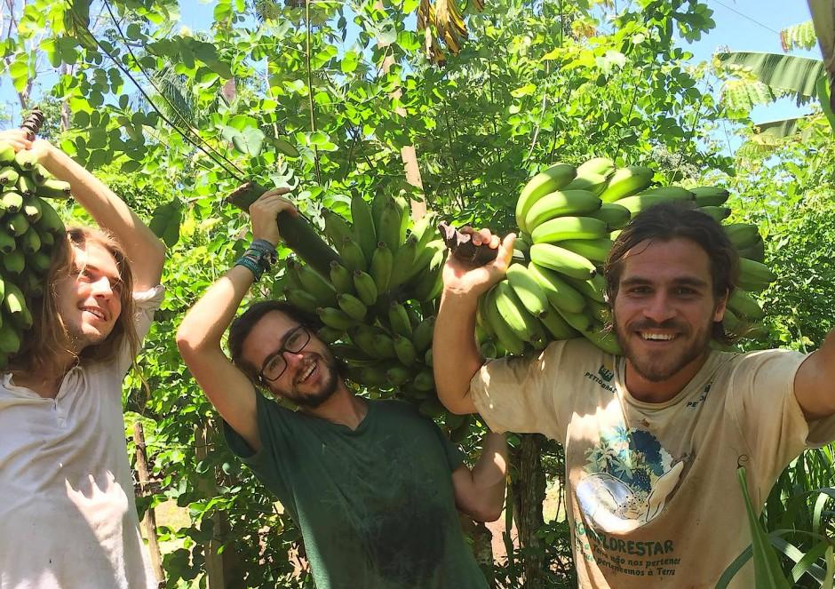 Die Mitarbeiter der Stiftung Renature setzen sich für nachhaltige Landwirtschaft ein.