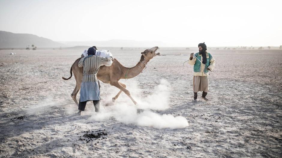 Zwei Männer laden Säcke mit Salz von den Feldern um Tichitt auf ein Kamel. Die Region beheimatet eine lange Formation von Sandsteinklippen, die die nördliche Grenze der Hodh-Senke markieren, in der Nähe eines alten Sees namens Aoukar. Das Aoukar-Becken ist eine natürliche Trockenregion mit Sanddünen und Salzebenen.