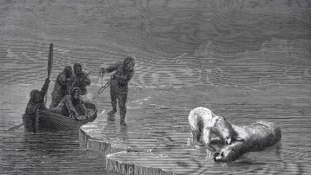 Seit 1897 im Eis: Leichen von Arktisforschern gefunden
