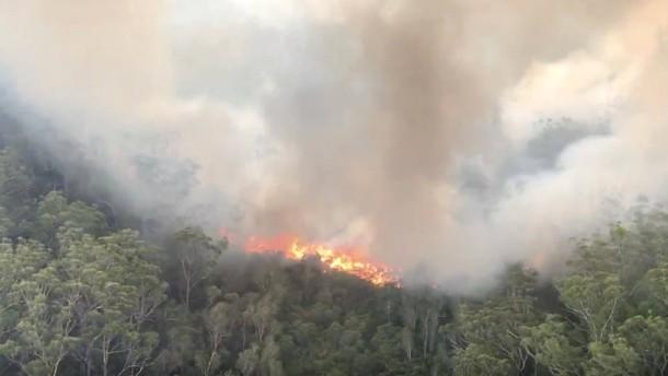 Waldbrände auf Fraser Island halten an
