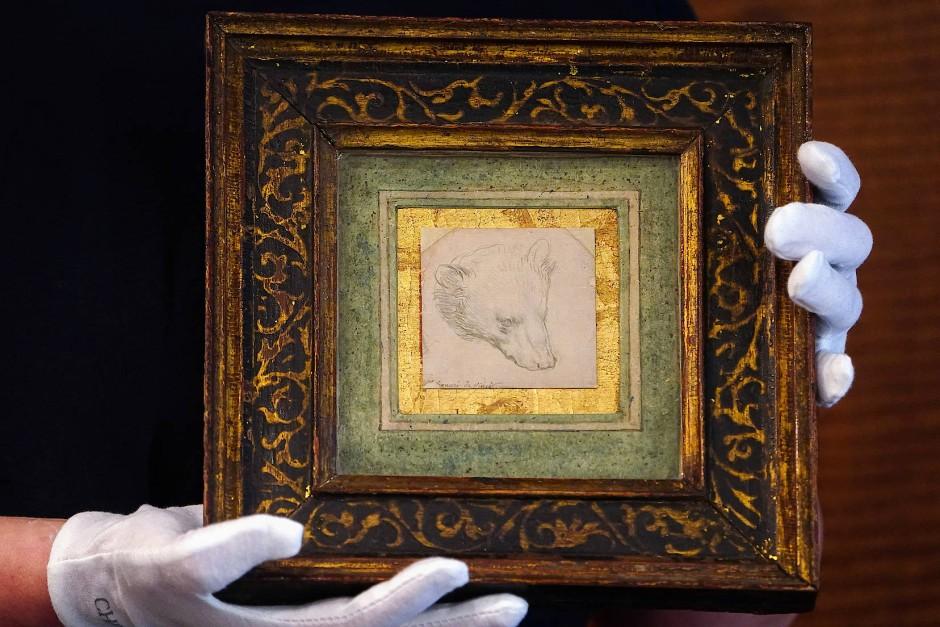 Gerahmt: Leonardos Bärenkopf-Zeichnung bei ihrer Präsentation in New York.