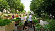 Gezähmtes Grün: Im neuen Frankfurter Garten können sich Stadtmenschen die Hände schmutzig machen.