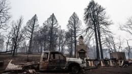 Lang ersehnter Regen in Australiens Brandgebieten