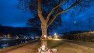 Blumen und Grablichter stehen an einem Baum nahe des Dreisam-Stadions in Freiburg, wo eine Studentin ermordet wurde