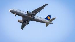 Reiseleiter geht im Flugzeug auf Stewardess los