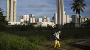 Brasilien setzt Soldaten gegen Moskitos ein