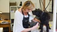 Vertrauliche Nähe: Meike Wentzel föhnt Hund Freddy
