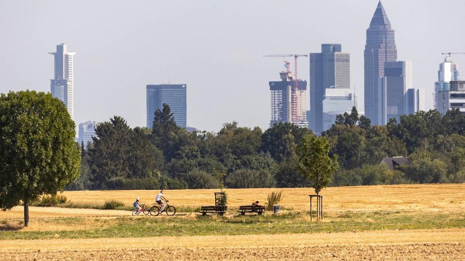 Nicht jeder kann und will sich Frankfurt leisten: Doch sind die Immobilien im Umland wirklich viel günstiger?