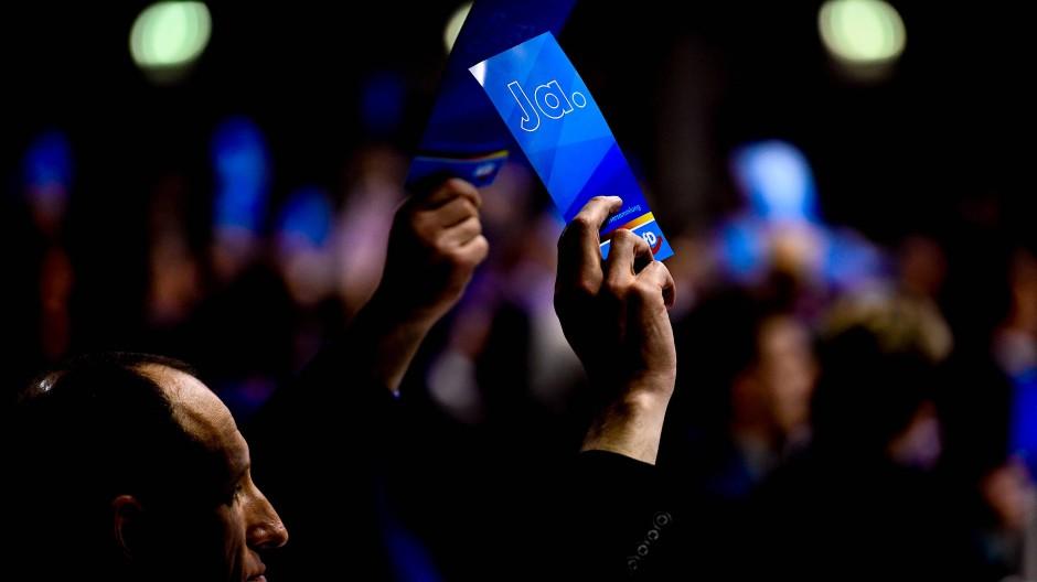 AfD-Delegierte halten auf der Europawahlversammlung ihrer Partei Stimmkarten in die Höhe.